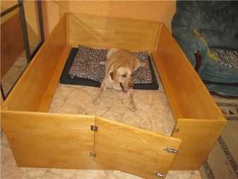 как построить вольер для большой собаки ростов